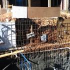 Construction 2012-11-17 10.33.16
