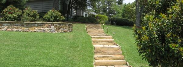 Steps IMG_0049